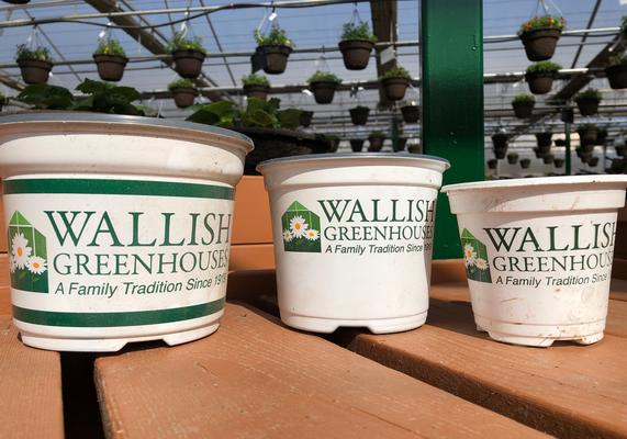 Wallish Pots for reuse
